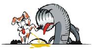 Notubo-logo