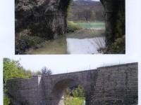 ponte-gabbiani-2