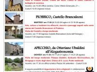 visite guidate dal 8 luglio al 28 agosto 2014 - locandina definitiva-p1