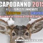 capodanno_2015_facebook_grande